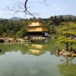 JAPAN spring 2015 418